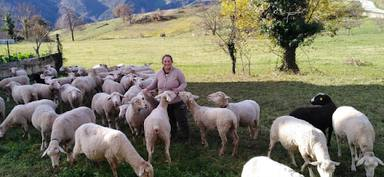 Así es la primera Escuela de Pastoras del siglo XXI nacida en España