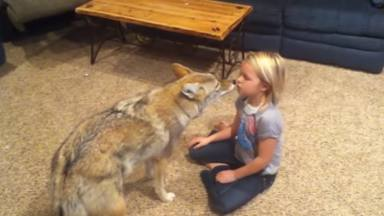 Un padre regala un perrito a su hija pequeña y al descubrir su procedencia se quedan en shock