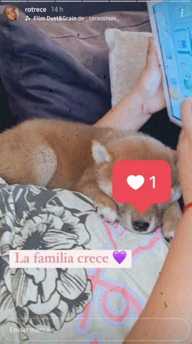 El nuevo perrito de Rocío Flores