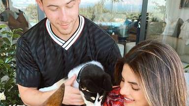El rasgo físico del nuevo perrito de Nick Jonas y Priyanka Chopra que ha dejado a todos boquiabiertos