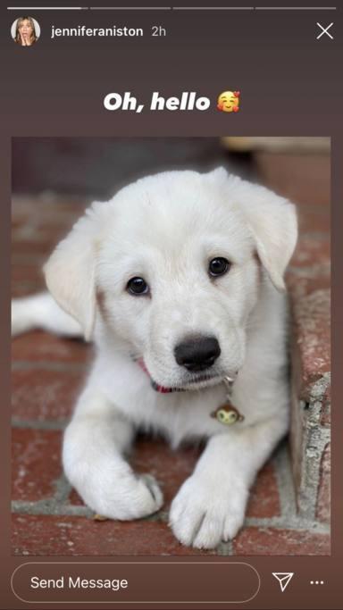 El adorable cachorro de Jennifer Aniston que te va a enamorar