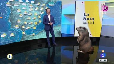 Mónica López sufre un ataque de risa en directo y recibe una reprimenda de su compañero: A ver si me dejas
