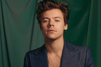 Harry Styles vuelve al proyecto que dejó en pausa, por un buen motivo
