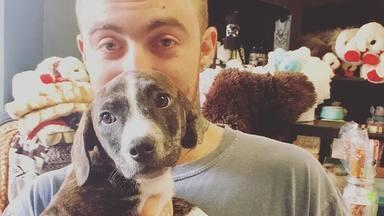 Ariana Grande adopta la mascota de Mac Miller