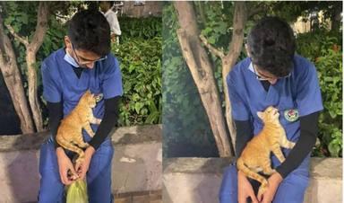 Un gatito se sube encima de un enfermero que estaba descansando y su reacción se hace viral